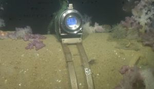 Subsea Isotopic Pig Tracking Location Pigging Transit Verification and Find Stuck or Lost Pigs